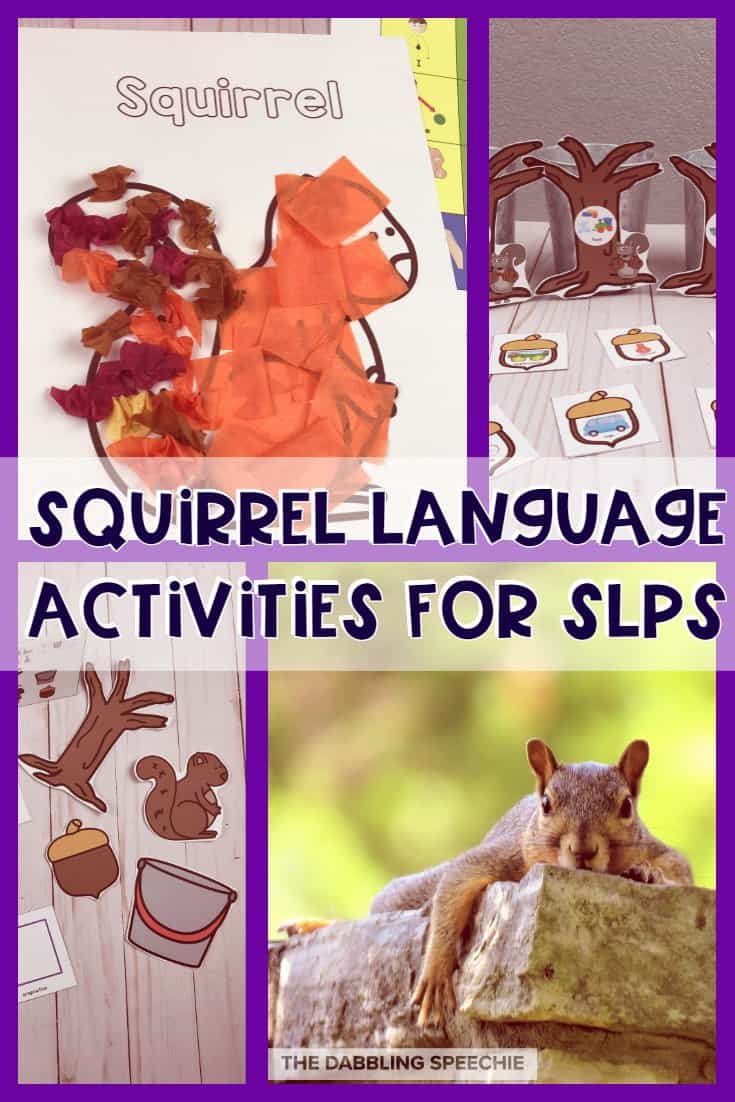 Squirrel Speech Therapy Ideas That Are Fun