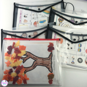 organize speech therapy materials